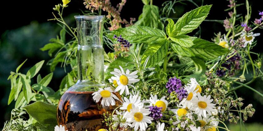 Gesunde Küche und Homöopathie mit Kräutern